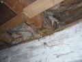 Práce na mlýně 066.jpg